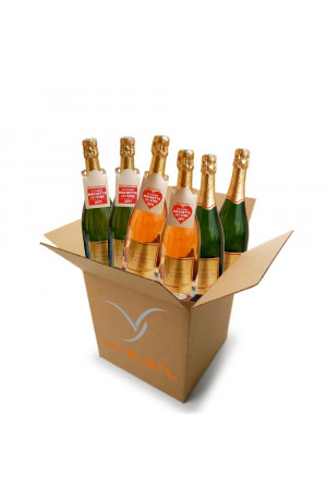 """Carton Découverte """"Champagne Bouvret"""""""